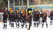 Fischtown Pinguins Team